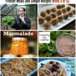 cooking from your pantry freezer meals