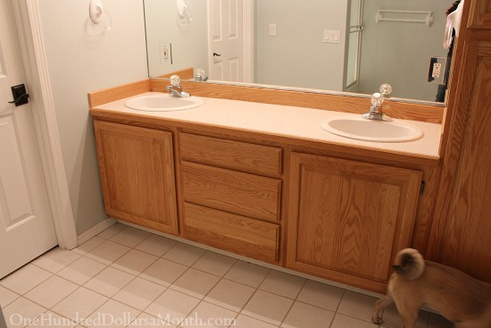 Jack And Jill Bathroom Remodel Part 1 One Hundred