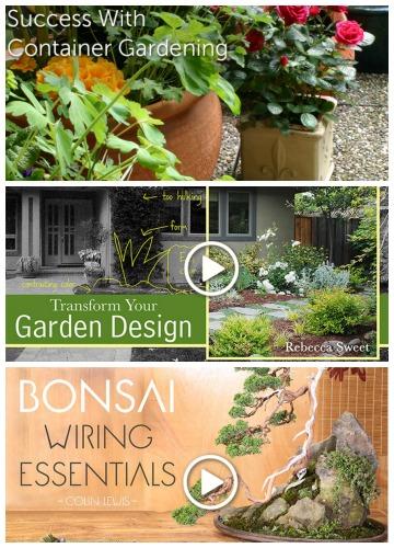 free gardening classes craftsy