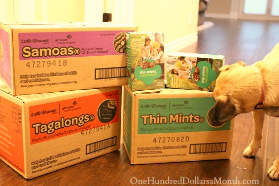 Giveaway – Enter to Win 1 of 3 Cases of Girl Scout Cookies