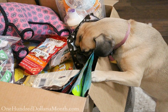 Only Natural Pet: Pet Food and Products Pet Lovers Can Stand Behind