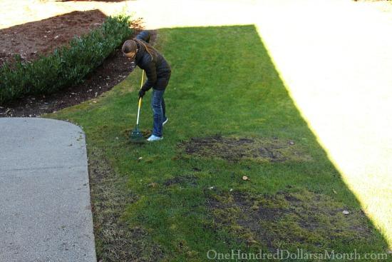 Mavis Butterfield | Backyard Garden Plot Pictures 2/22/15
