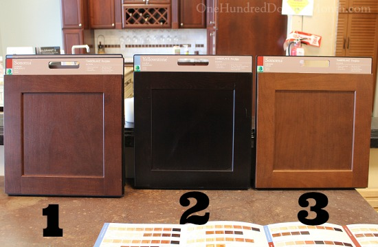 Master Bathroom Vanity Cabinets – Which Color Do You Prefer?