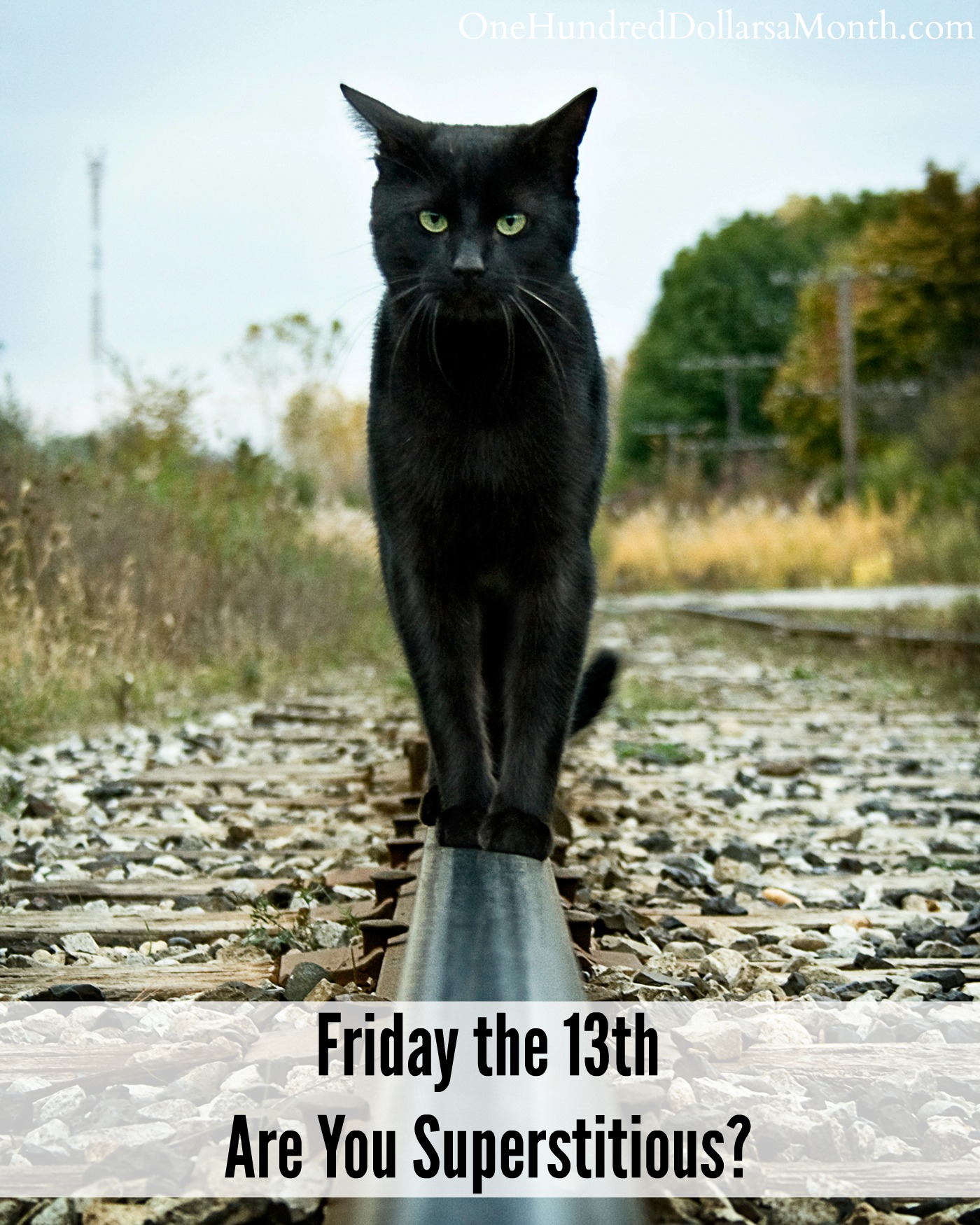 Friday the 13th – Are You Superstitious?