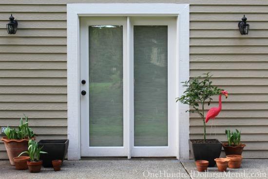 Mavis Butterfield | Backyard Garden Plot Pictures 3/22/15
