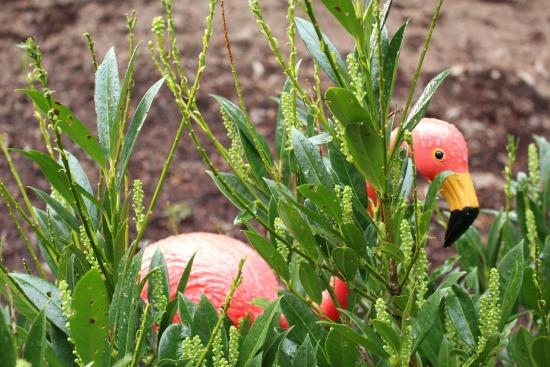 pink plastic flamingo