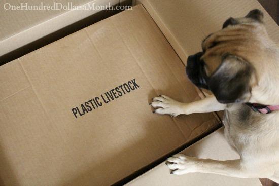 plastic livestock