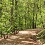 Monticello path