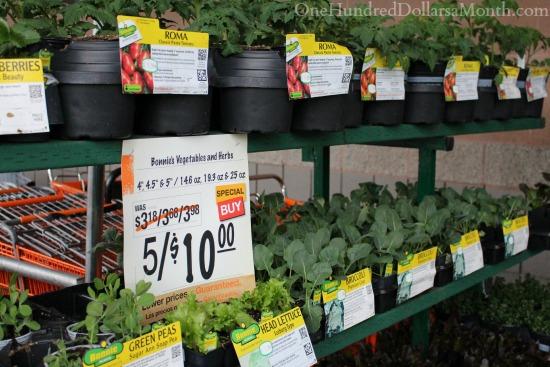 bonnie vegetable plants