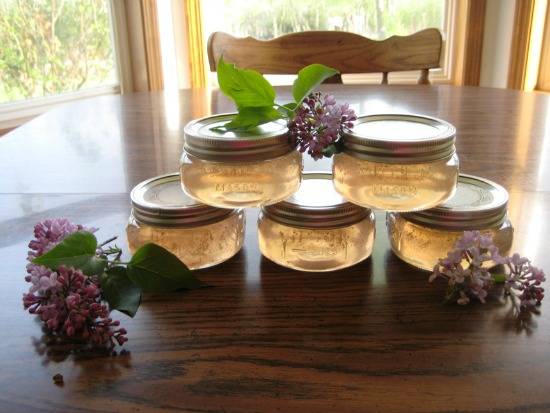 Canning 101 – Lilac Blossom Jelly