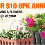 the home depot sale