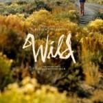 Friday Night at the Movies – Wild