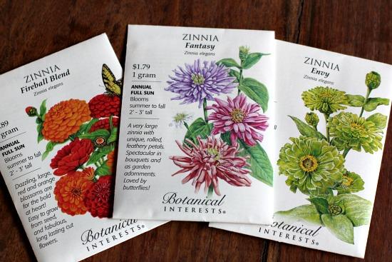 zinnia-seeds
