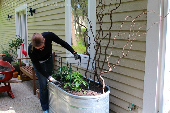 Fill Garden Containers with Buckets to Save Money on Potting Soil