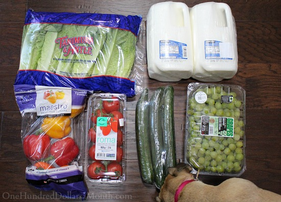 Can Shopping at Costco Save You Money? Week 21 of 52