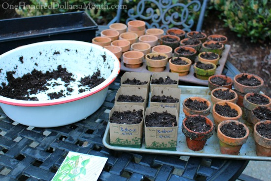 Hi. My Name is Mavis and I Can't Stop Planting Seeds. The End.