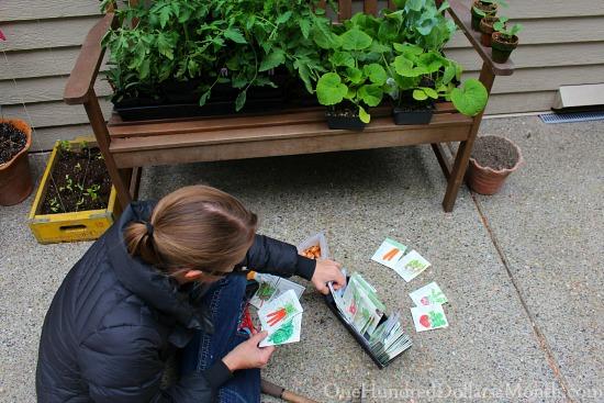 sorting seeds