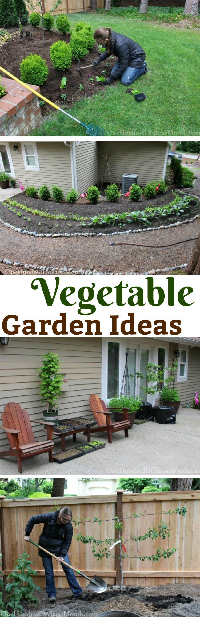 Mavis Butterfield | Backyard Garden Plot Pictures 5/17/15