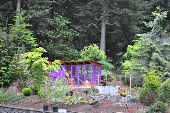 Mavis Mail – Sara From Washington Sends in Pics of Her 3+ Acres, No HOA Property