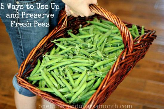 5 Ways to Use Up and Preserve Fresh Peas