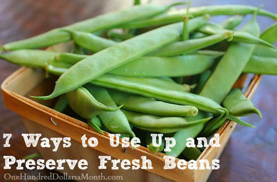 7 Ways to Use Up and Preserve Fresh Beans