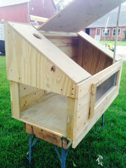 DIY chicken coop ideas