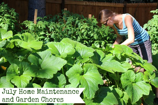July Home Maintenance and Garden Chores
