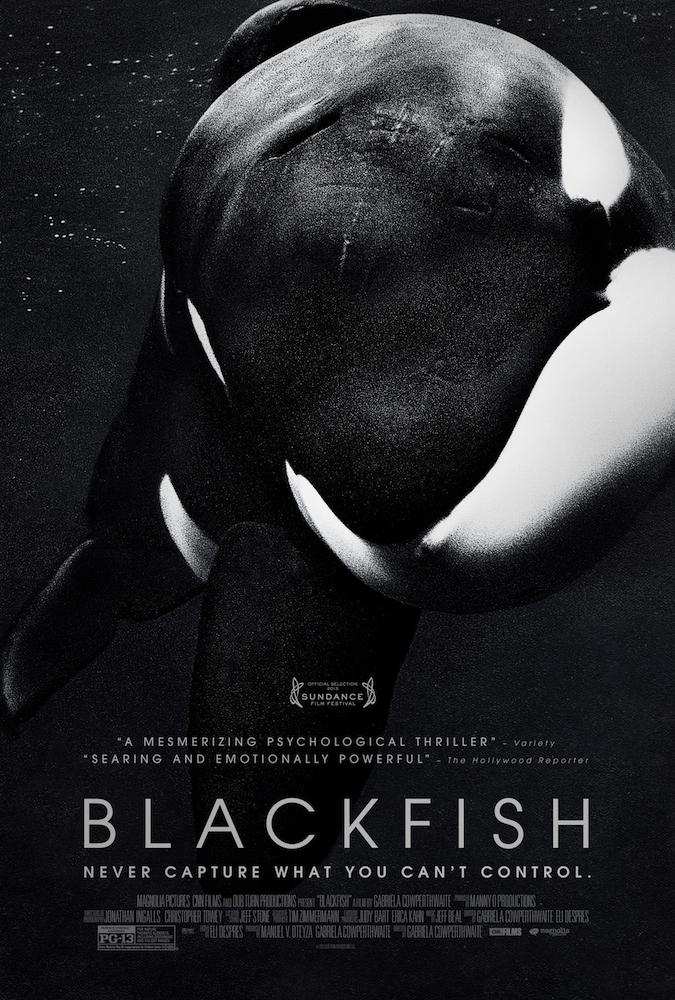 Friday Night at the Movies – Blackfish