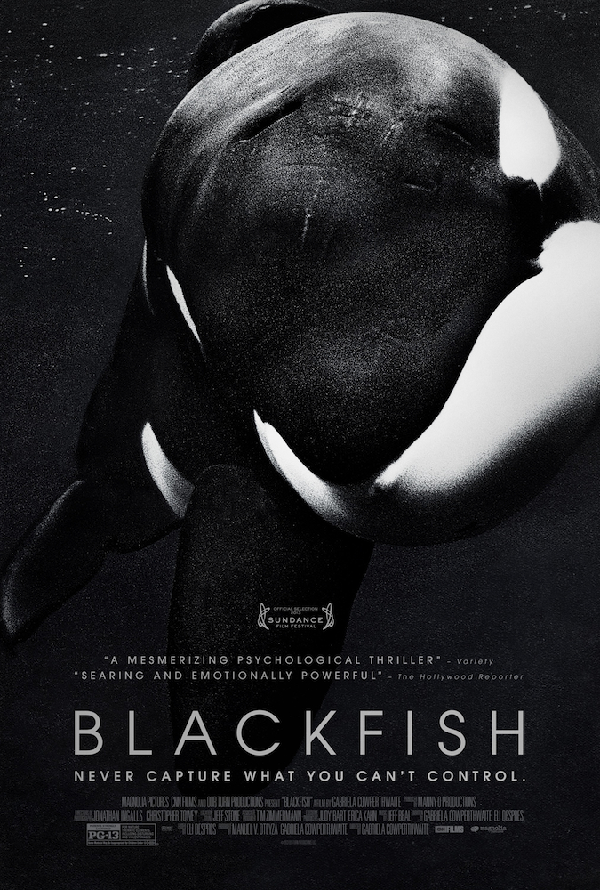 Friday Night at the Movies – Blackfish