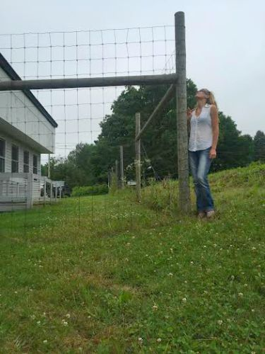 deer fence maine