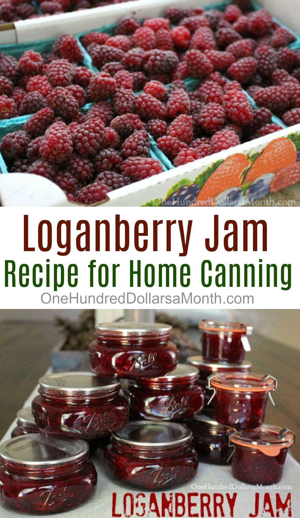 Canning 101 – How to Make Loganberry Jam