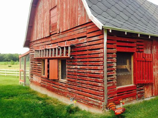 Angela From Central Wisconsin Sends in Her Chicken Coop Photos