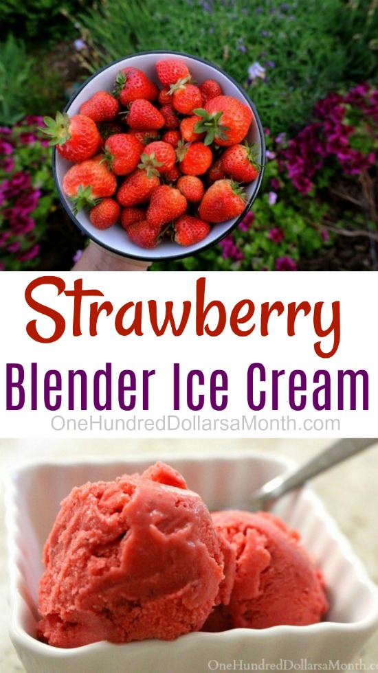 Strawberry Blender Ice Cream
