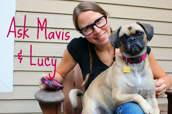 Ask Mavis: We're Talking Zucchini Relish, Squash Bugs, Party Games and MORE!