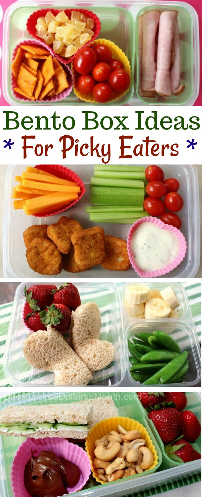 Back to School Bento Boxes Ideas