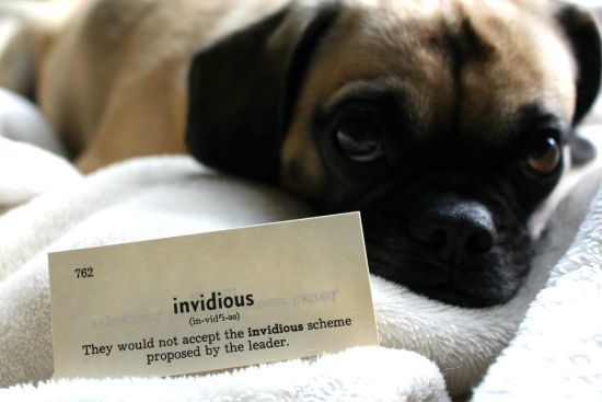 invidious