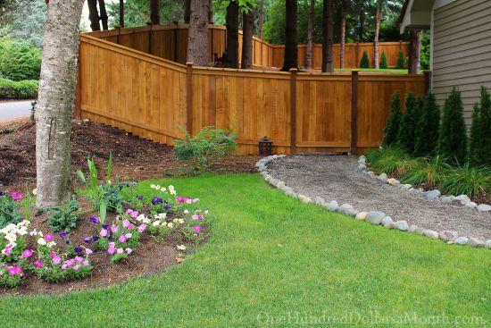Mavis Butterfield | Backyard Garden Plot Pictures 7/16/15