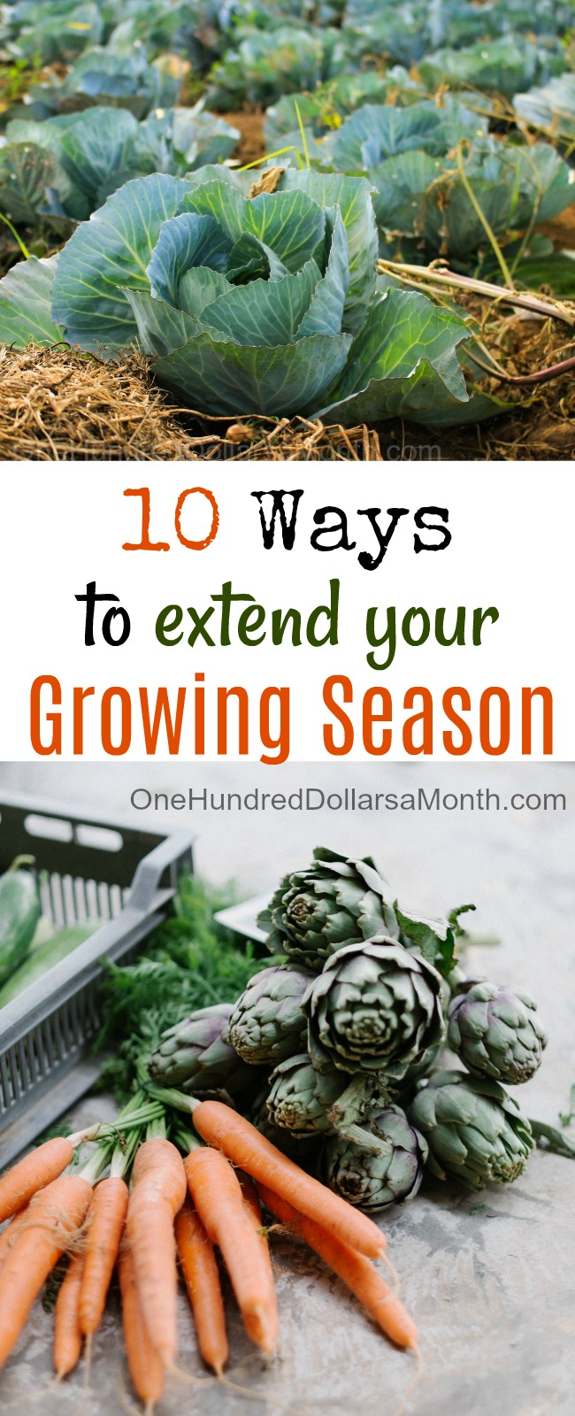10 Ways to Extend Your Growing Season
