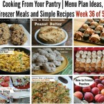 Cooking From Your Pantry   Menu Plan Ideas, Freezer Meals and Simple Recipes Week 36 of 52