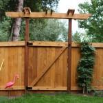 Mavis Butterfield   Backyard Garden Plot Pictures 9/27/15