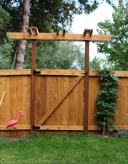 Mavis Butterfield | Backyard Garden Plot Pictures 9/27/15