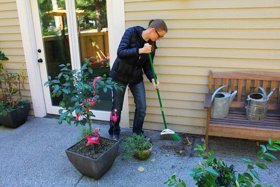 Mavis Butterfield   Backyard Garden Plot Pictures 10/11/15