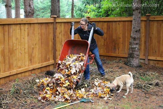 Mavis Butterfield | Backyard Garden Plot Pictures 11/8/15