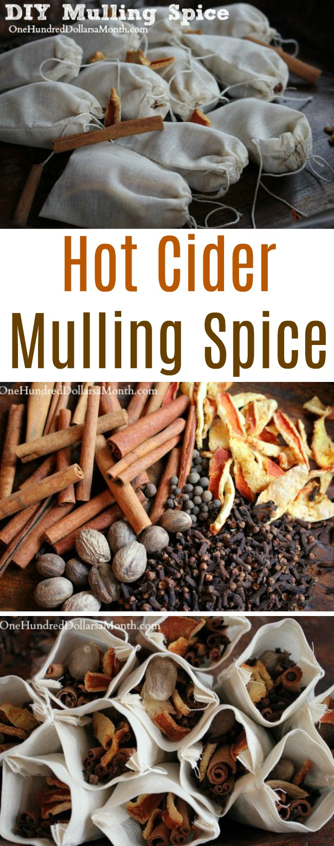 Holiday Gift Idea – Homemade Hot Cider Mulling Spice