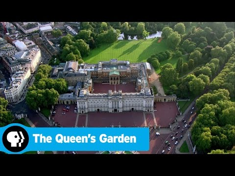 Friday Night at the Movies – The Queen's Garden