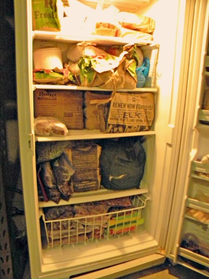 The $20/$20 Challenge: Amy's Pantry Shows the Benefits of a 5 Acre Garden