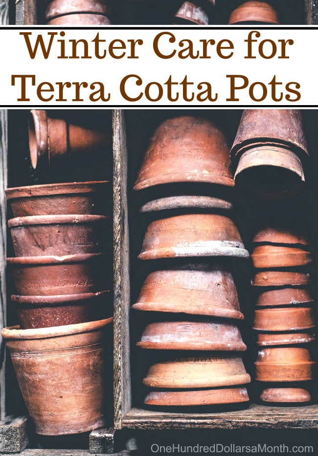 Winter Care for Terra Cotta Pots