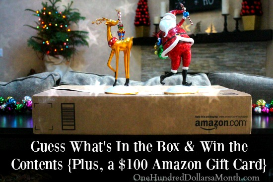 Giveaway: Guess What's In the Box & Win the Contents {Plus, a $100 Amazon Gift Card}
