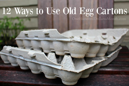 12 Ways to Use Old Egg Cartons