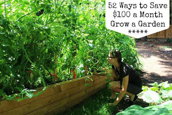 52 Ways to Save $100 a Month | Grow a Garden {Week 19 of 52}